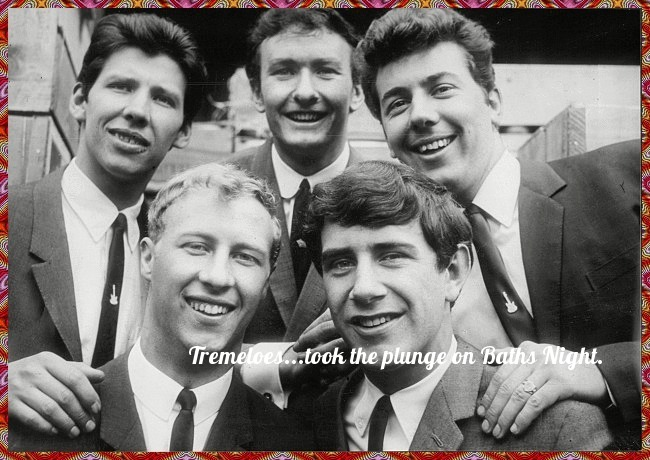 tremeloes plunge